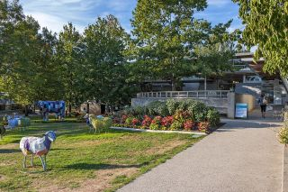 Photo 17: 4311 4313 ALBERT Street in Burnaby: Vancouver Heights Multifamily for sale (Burnaby North)  : MLS®# R2616439