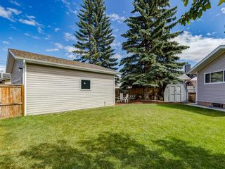 Photo 47: 44 MAITLAND Green NE in Calgary: Marlborough Park Detached for sale : MLS®# A1030134
