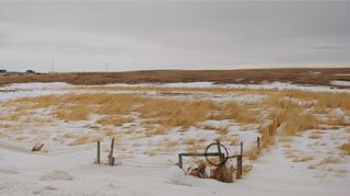 Photo 8: HIGHWAY 567 RANGE ROAD 22 in Rural Rocky View County: Rural Rocky View MD Land for sale : MLS®# C4288985