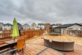Photo 47: 92 COPPERPOND Mews SE in Calgary: Copperfield Detached for sale : MLS®# A1084015