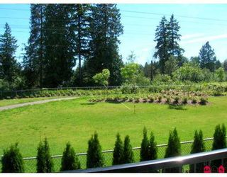 "Photo 4: 21770 95A AV in Langley: Walnut Grove House for sale in ""Redwood Grove"" : MLS®# F2610886"