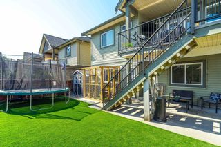 Photo 38: 32642 TUNBRIDGE AVENUE in Mission: Mission BC House for sale : MLS®# R2601170