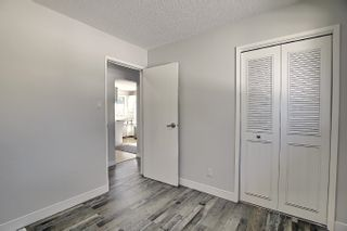 Photo 23: 3223 112 Avenue in Edmonton: Zone 23 House for sale : MLS®# E4252129