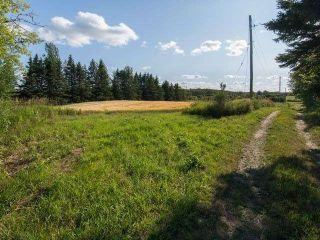 Photo 7: 294153 8th Line in Amaranth: Rural Amaranth Property for sale : MLS®# X4544385