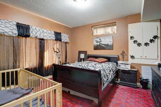 Photo 33: 40 CHRISTIE CAIRN Square SW in Calgary: Christie Park Detached for sale : MLS®# A1021226