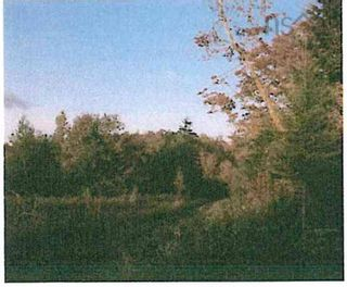 Photo 2: East River East Side Road in Springville: 108-Rural Pictou County Vacant Land for sale (Northern Region)  : MLS®# 202122398