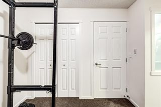 Photo 29: 3203 279 Copperpond Common SE in Calgary: Copperfield Apartment for sale : MLS®# A1117185