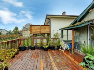 Photo 17: 3060 Albina St in Saanich: SW Gorge House for sale (Saanich West)  : MLS®# 860650