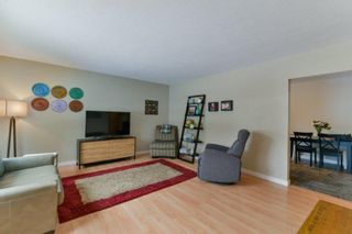 Photo 4: 175 Moore Avenue in Winnipeg: Pulberry Residential for sale (2C)  : MLS®# 202104254
