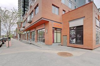 Photo 31: 101 215 13 Avenue SW in Calgary: Beltline Apartment for sale : MLS®# A1075160