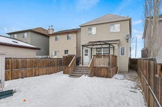 Photo 35: 19 Copperfield Terrace SE in Calgary: Copperfield Detached for sale : MLS®# A1062283