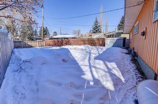Photo 35: 9435 Allison Drive SE in Calgary: Acadia Detached for sale : MLS®# A1074577