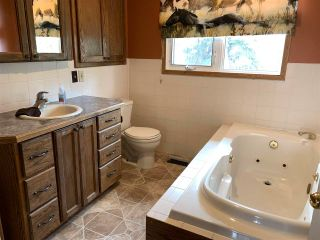 Photo 21: 41480 Range Road 145: Rural Flagstaff County House for sale : MLS®# E4243916