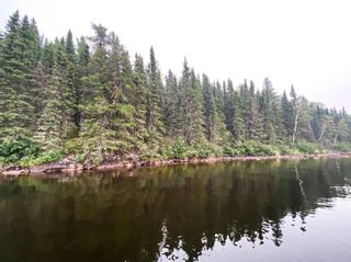 Photo 1: 57 Waterfront Road in Red Lake: Vacant Land for sale : MLS®# TB212255