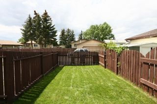 Photo 31: 27 Abalone Way NE in Calgary: Abbeydale House for sale : MLS®# C3572378