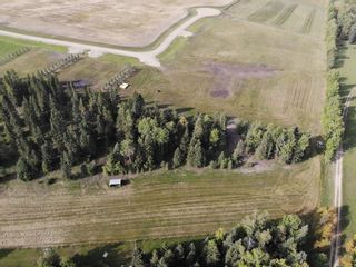 Photo 9: 39-33048 Range Road 51: Rural Mountain View County Land for sale : MLS®# A1085992