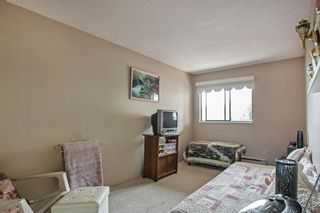 """Photo 12: 203 5224 204 Street in Langley: Langley City Condo for sale in """"SOUTH WYNDE COURT"""" : MLS®# R2600463"""
