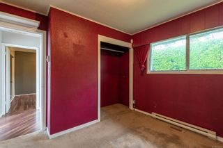 Photo 14: 587 Alder St in : CR Campbell River Central House for sale (Campbell River)  : MLS®# 878419