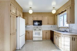 Photo 12: 6135 TOUCHWOOD Drive NW in Calgary: Thorncliffe Detached for sale : MLS®# C4291668
