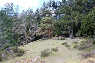 Photo 25: Lot A Armand Way in : GI Salt Spring Land for sale (Gulf Islands)  : MLS®# 871175