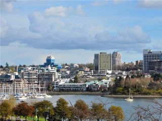 """Photo 9: 501 1318 HOMER Street in Vancouver: Downtown VW Condo for sale in """"GOVERNOR'S VILLA II"""" (Vancouver West)  : MLS®# V884643"""