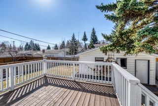 Photo 42: 1131 Lake Sylvan Drive SE in Calgary: Lake Bonavista Detached for sale : MLS®# A1094428