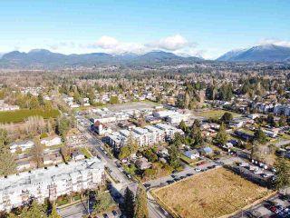 Photo 5: 12060 EDGE Street in Maple Ridge: East Central Duplex for sale : MLS®# R2535359
