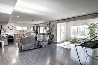 Photo 34: 176 WILLOWMERE Way: Chestermere Detached for sale : MLS®# A1153271