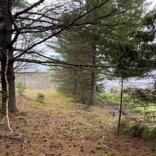 Photo 18: Vacant Land Highway 331 in West Lahave: 405-Lunenburg County Vacant Land for sale (South Shore)  : MLS®# 202111160