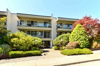 """Photo 1: 106 1351 MARTIN Street: White Rock Condo for sale in """"The Dogwood"""" (South Surrey White Rock)  : MLS®# R2186058"""