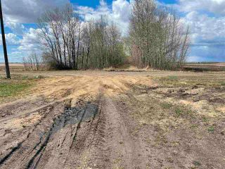 Photo 25: Twp 604 Rg Rd 244: Rural Westlock County Rural Land/Vacant Lot for sale : MLS®# E4223747