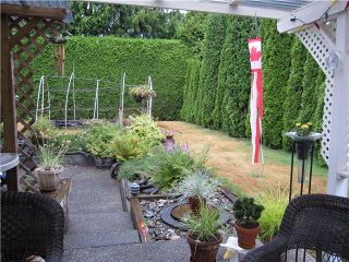 Photo 15: 20115 PATTERSON Avenue in Maple Ridge: Southwest Maple Ridge House for sale : MLS®# V1136191