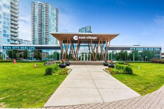 Photo 40: 1002 519 Riverfront Avenue SE in Calgary: Downtown East Village Apartment for sale : MLS®# A1125350