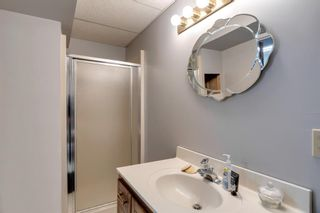 Photo 34: 53 Wood Valley Road SW in Calgary: Woodbine Detached for sale : MLS®# A1111055