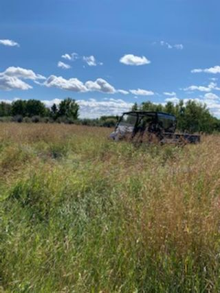 Photo 9: NONE-192 St W and 274 Ave W-Rural Foothills County-