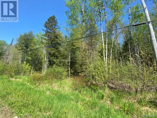 Photo 15: 5264 Rte 770 in Rollingdam: Vacant Land for sale : MLS®# NB058269