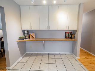 Photo 25: 5403 106 Street in Edmonton: Zone 15 House for sale : MLS®# E4228041