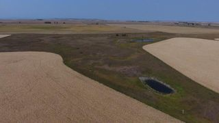 Photo 11: : Rural Foothills M.D. Land for sale : MLS®# C4137604