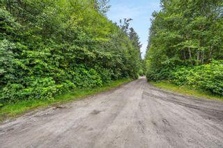 Photo 18: 16706 Parkinson Rd in Port Renfrew: Sk Port Renfrew Land for sale (Sooke)  : MLS®# 882036