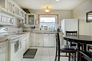 Photo 7: 3303 39 Street SE in Calgary: Dover Detached for sale : MLS®# A1084861