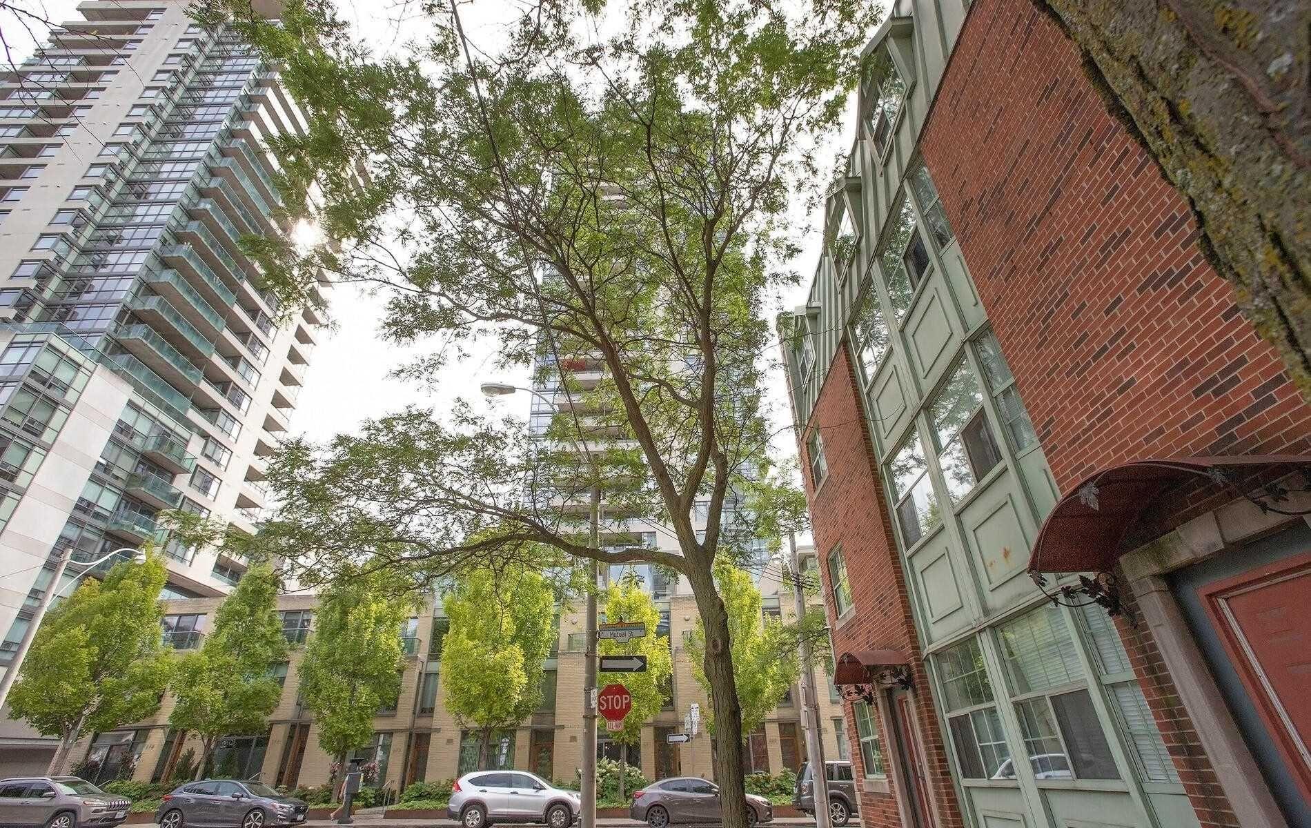 Main Photo: 304 281 Mutual Street in Toronto: Church-Yonge Corridor Condo for sale (Toronto C08)  : MLS®# C5338581