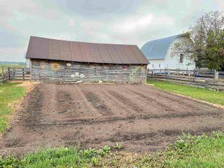 Photo 45: 1405 TWP RD 584: Rural Barrhead County House for sale : MLS®# E4262464