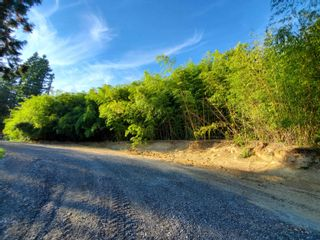 Photo 4: 27141 RIVER Road in Maple Ridge: Thornhill MR Land for sale : MLS®# R2616197