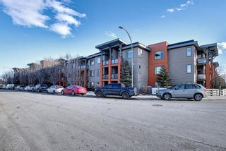 Photo 4: 119 2727 28 Avenue SE in Calgary: Dover Apartment for sale : MLS®# A1077846
