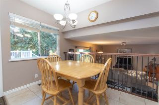 Photo 14: 7877 143A Street in Surrey: East Newton House for sale : MLS®# R2536977