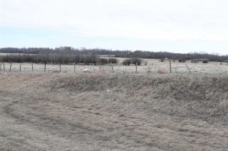 Photo 5: TWP 481 HWY 795: Rural Leduc County Rural Land/Vacant Lot for sale : MLS®# E4244581