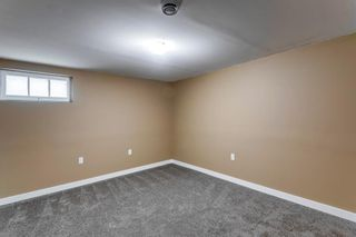 Photo 21: 2408 39 Street SE in Calgary: Forest Lawn Detached for sale : MLS®# A1114671