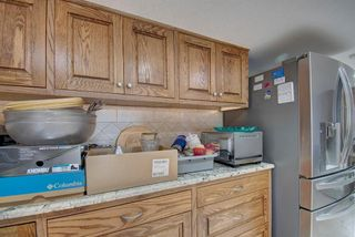 Photo 37: 291092 Yankee Valley Boulevard: Airdrie Detached for sale : MLS®# A1028946