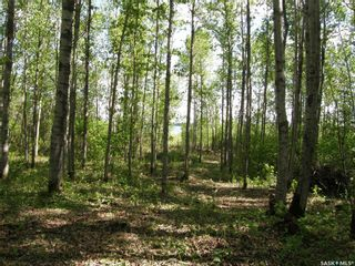Photo 5: Lot 10 Delaronde Way in Delaronde Lake: Lot/Land for sale : MLS®# SK851495