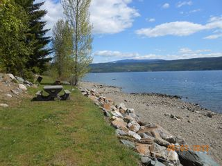 Photo 11: 108 Airstrip Road in Anglemont: North Shuswap Land Only for sale (Shuswap)  : MLS®# 10067018